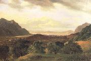 Alexandre Calame The Rhone Valley at Bex with a View to the Lake of Geneva (nn02) oil